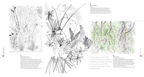Edward Hutchison el dibujo en el proyecto del paisaje follaje