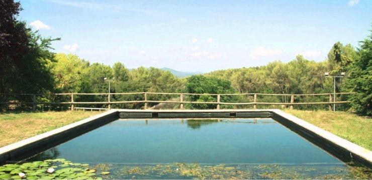 Piscina natural lago natural projectesdaigua 2