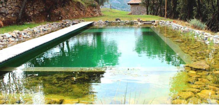 Piscina natural lago natural projectesdaigua