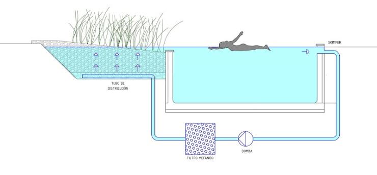 Piscina natural, piscina naturalizada, biopiscina con filtrado mecánico urbarbolisimo