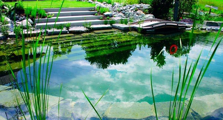 Piscina natural, piscina naturalizada, biopiscina tipo clasico lawebdelaspiscinas.jpg