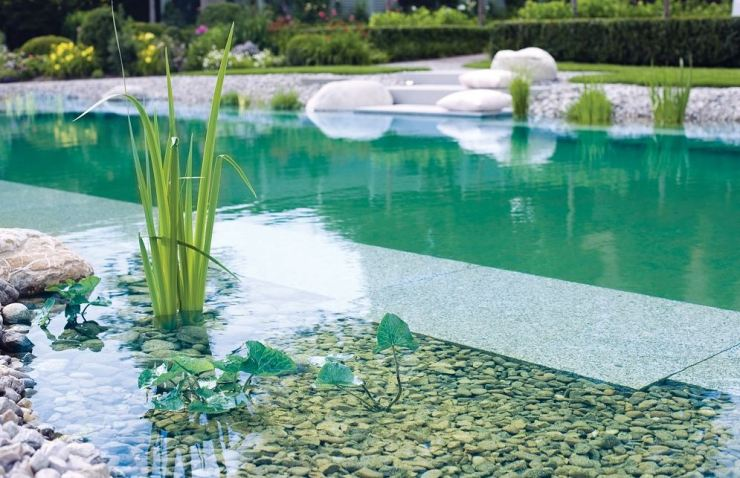 Piscina naturalizada, piscina biologica, biopiscina, Piscina natural aquanet 2