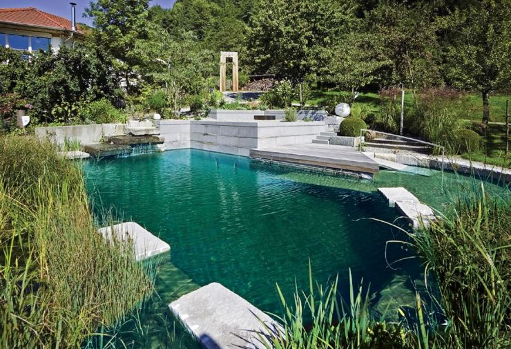 Piscina naturalizada, piscina biologica, biopiscina, Piscina natural aquanet widenhorn