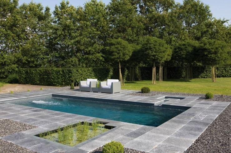 Piscina naturalizada, piscina biologica, biopiscina, Piscina natural aquanet