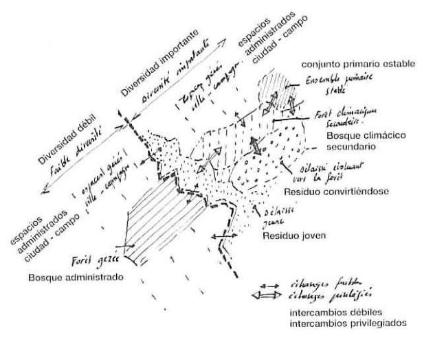 IX - Representación y escala