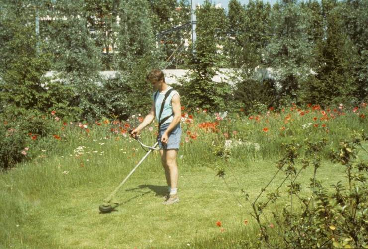 jardinero 1980 el tercer paisaje.jpg