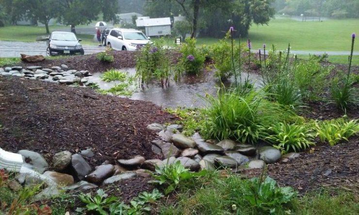 jardin-de-lluvia2