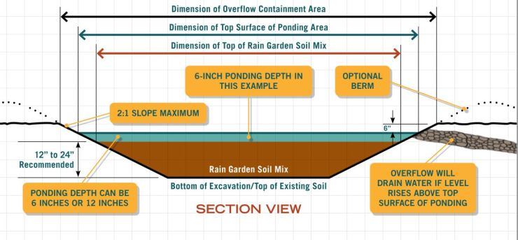 Rain Garden Handbook for western 09 (diseño sección)