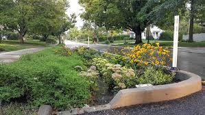 Clintonville rain garden 2