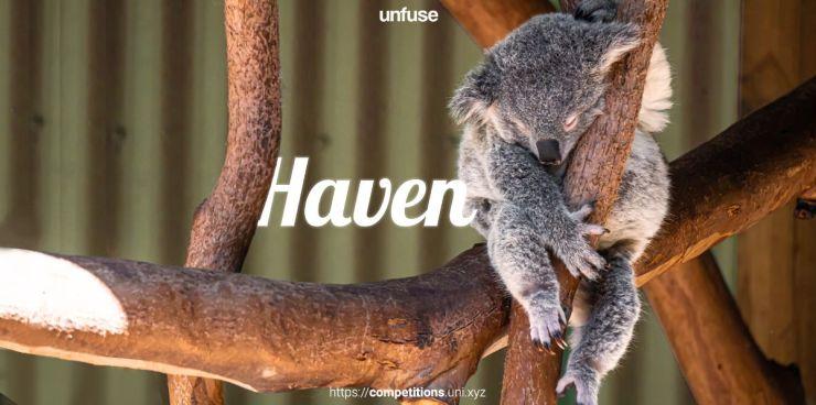 Haven koalas