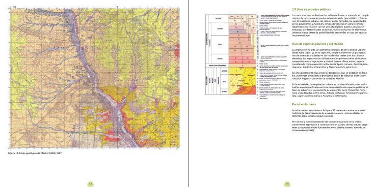 Factores condicionantes de la vegetacion en ambientes urbanos pagin 54-55