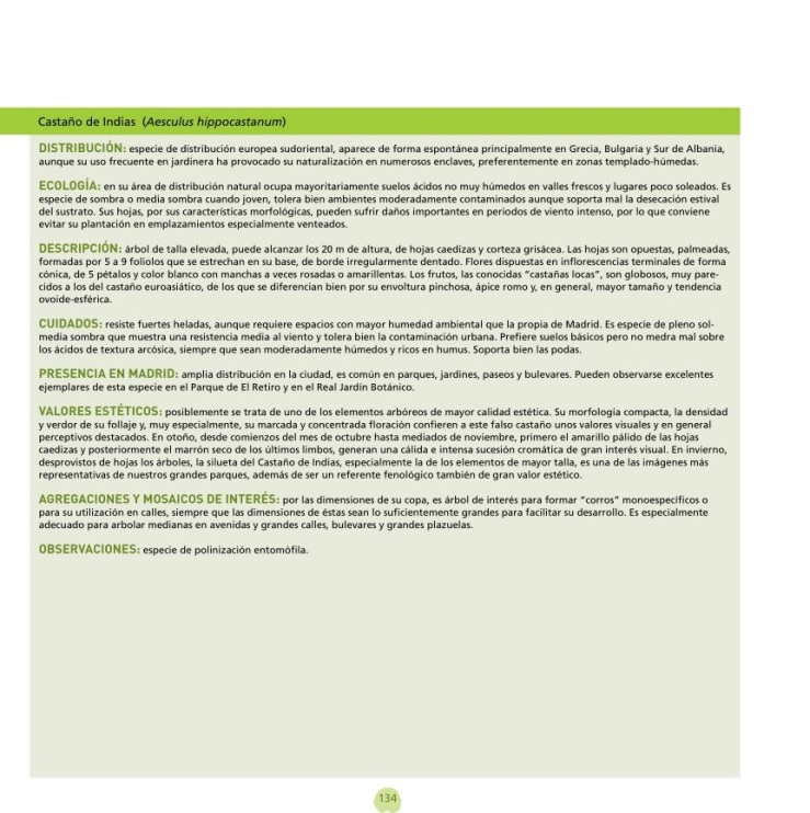 Ficha arbolado ejemplo Castaño de Indias, paginas 134