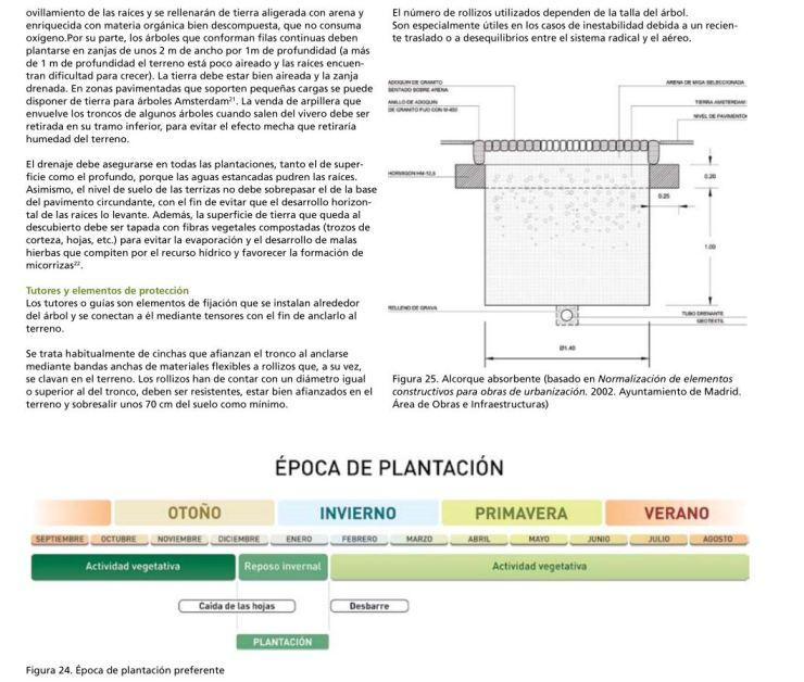 Mantenimiento y gestión ejemplo pagina 244